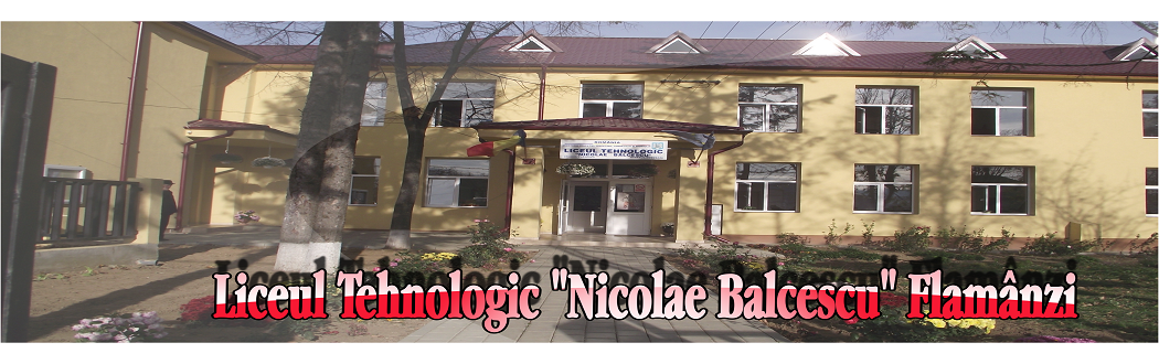 """Liceul Tehnologic """"Nicolae Balcescu"""""""