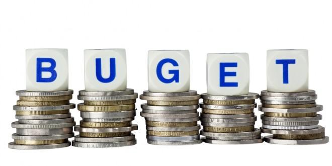 Bugetul detaliat